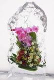 Mazzo del fiore in ghiaccio IV Immagini Stock Libere da Diritti