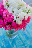 Mazzo del flox in un vaso di vetro Fotografia Stock