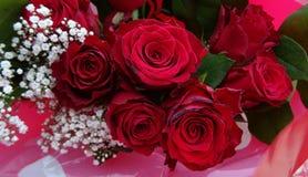 Mazzo del fondo delle rose rosse Fotografie Stock