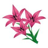 Mazzo del giglio del fiore di origami sopra bianco Fotografie Stock