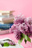 Mazzo del lillà e dei libri su fondo rosa immagini stock