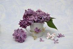 Mazzo del lillà in un vaso Immagine Stock Libera da Diritti