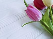Mazzo del marzo stagionale dei tulipani su una tavola di legno bianca del fondo Fotografie Stock