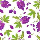 Mazzo del modello di uva con le foglie royalty illustrazione gratis