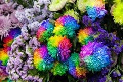 Mazzo del primo piano dei crisantemi Immagine Stock