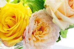 Mazzo del wite e del giallo delle rose sul sole immagini stock libere da diritti