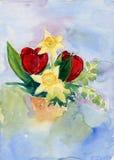 Mazzo dell'acquerello con i narcissuses ed i tulipani Fotografia Stock Libera da Diritti