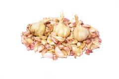 Mazzo dell'aglio fotografia stock