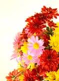 Mazzo dell'autunno dei fiori fotografia stock libera da diritti