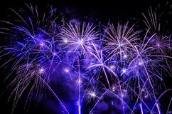Mazzo dell'esposizione viola dei fuochi d'artificio Fotografie Stock