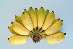 Mazzo 1 della banana Fotografia Stock