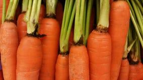 Mazzo della carota Fotografia Stock