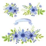 Mazzo della margherita blu dell'acquerello Insieme floreale della decorazione Immagine Stock Libera da Diritti
