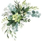 Mazzo della pianta di nozze Illustrazione dell'acquerello con il eucalyptu royalty illustrazione gratis