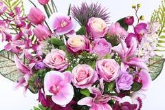 Mazzo della porpora molto genere di fiore immagini stock