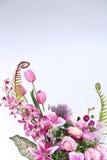 Mazzo della porpora molto genere di fiore fotografia stock