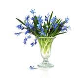 Mazzo della primavera con i colori blu Fotografia Stock Libera da Diritti