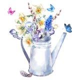Mazzo della primavera con i narcisi, le viole del pensiero, il muscari e le farfalle royalty illustrazione gratis