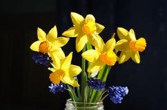 Mazzo della primavera su un fondo nero immagini stock libere da diritti