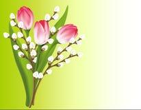 Mazzo della sorgente. Tulipani e salice Fotografie Stock Libere da Diritti
