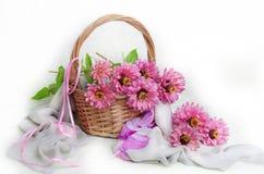 Mazzo della zinnia rosa su un fondo bianco fotografia stock libera da diritti