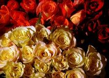 Mazzo delle rose Fotografie Stock