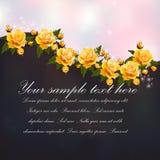 Mazzo delle rose Fotografia Stock Libera da Diritti