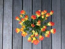 Mazzo delle rose arancio Fotografia Stock