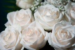 Mazzo delle rose bianche Fotografia Stock