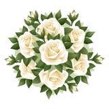 Mazzo delle rose bianche. illustrazione. Fotografia Stock Libera da Diritti