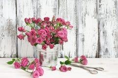 Mazzo delle rose cremisi in secchio Immagini Stock