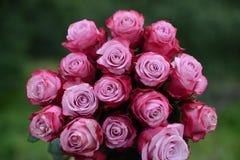 Mazzo delle rose dentellare Immagine Stock Libera da Diritti
