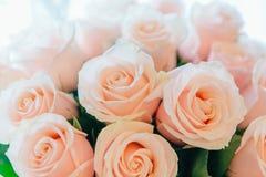 Mazzo delle rose di tè Immagine Stock Libera da Diritti