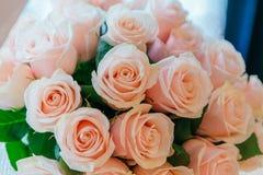 Mazzo delle rose di tè Immagini Stock