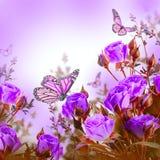 Mazzo delle rose e della farfalla delicate, floreale Immagini Stock Libere da Diritti