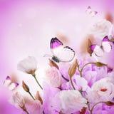 Mazzo delle rose e della farfalla rosa Fotografia Stock Libera da Diritti
