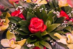 Mazzo delle rose e di Alstroemeria Fotografie Stock Libere da Diritti