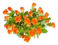 Mazzo delle rose isolate su fondo bianco. Immagine Stock Libera da Diritti