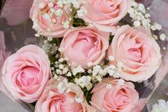 Mazzo delle rose rosa delicate Fotografia Stock Libera da Diritti