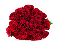 Mazzo delle rose rosse su un fondo bianco Fotografie Stock