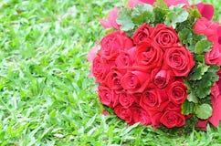Mazzo delle rose rosse sul prato inglese. Fotografia Stock Libera da Diritti
