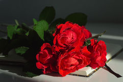 Mazzo delle rose rosse sul taccuino Immagini Stock
