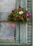 Mazzo delle rose selvatiche Fotografie Stock Libere da Diritti