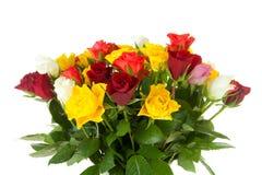 Mazzo delle rose variopinte Fotografia Stock Libera da Diritti