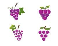 Mazzo di acini d'uva con l'icona della foglia royalty illustrazione gratis