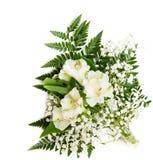 Mazzo di Alstroemeria bianco con la felce isolata su fondo bianco Immagine Stock Libera da Diritti