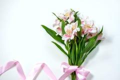Mazzo di alstroemeria dei fiori con il contenitore di regalo su un fondo bianco Fotografia Stock