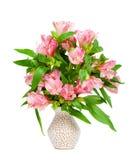 Mazzo di alstroemeria rosa in vaso Fotografia Stock
