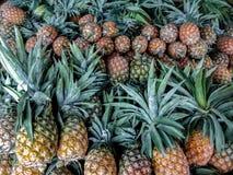 Mazzo di ananas variopinti maturi fotografia stock libera da diritti