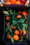Mazzo di arance fresche dei mandarini in una scatola sul mercato, vista superiore Fotografie Stock